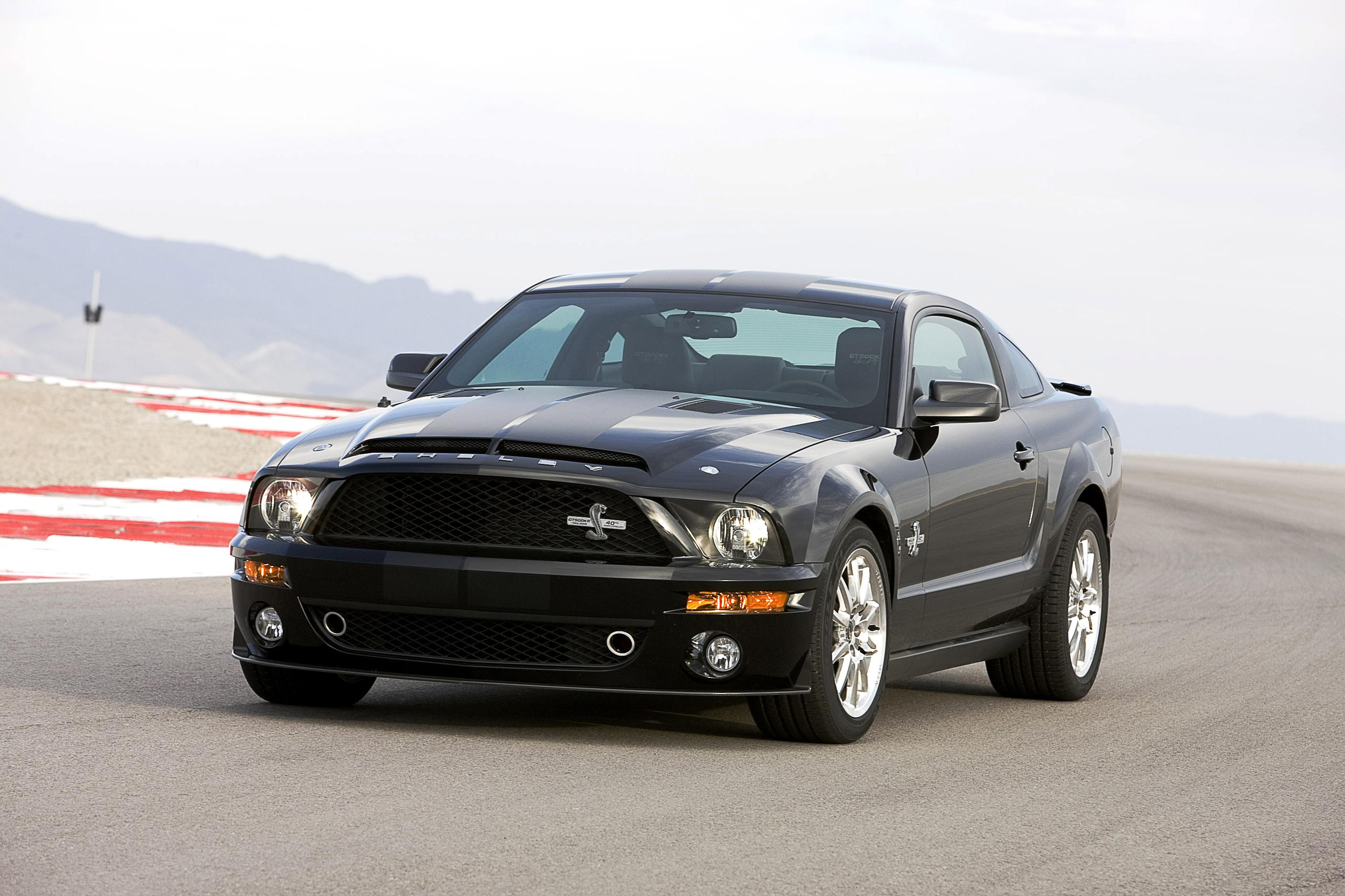 2008 Ford Shelby Gt500kr Picture 7398