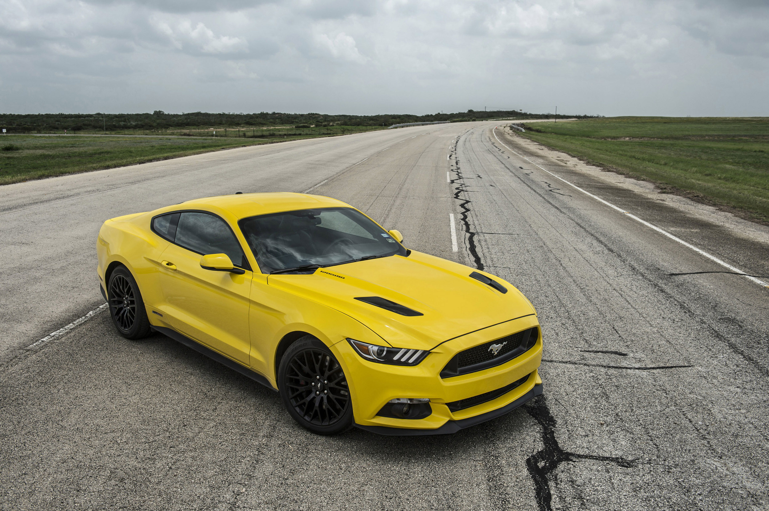 meet the authors 2015 mustang