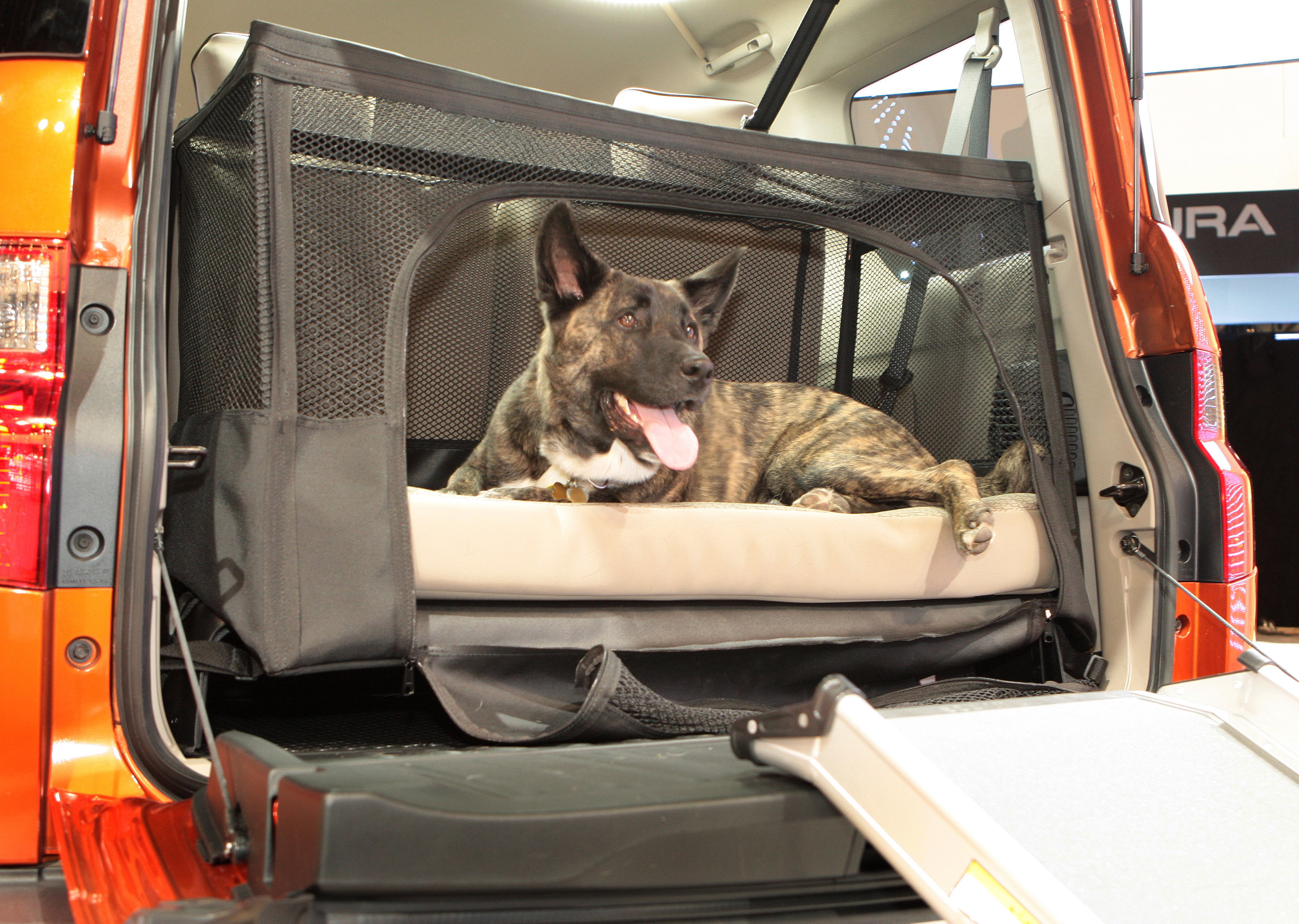 Suv Floor Mats >> Dog-friendly Honda Element Concept Transforms SUV into Pet ...
