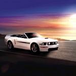 2009 Mustang, 7 of 9