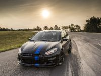2013 Dodge Dart Mopar, 6 of 13