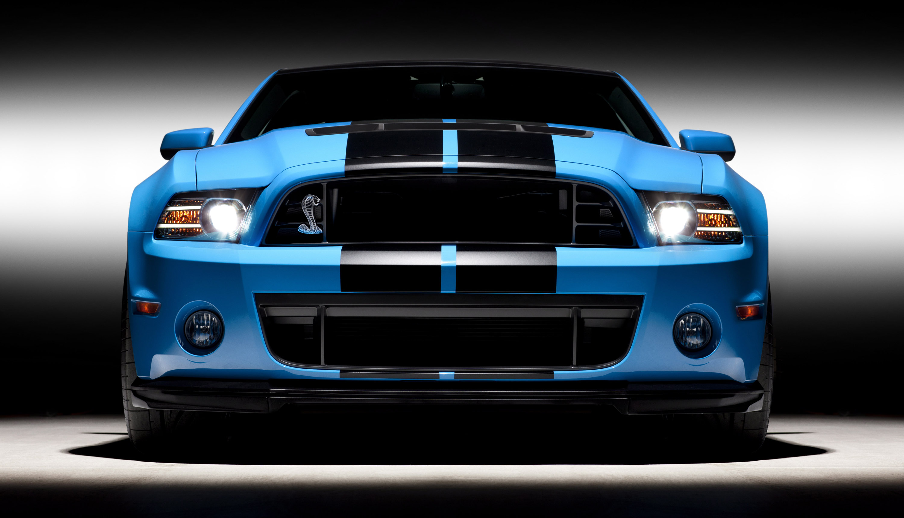2013 Ford Shelby GT500 Picture #2 of 11