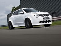 2013 Nissan Juke-R #001, 3 of 13
