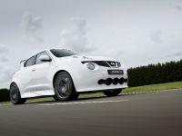 2013 Nissan Juke-R #001, 4 of 13