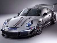 2013 Porsche 911 GT3 Cup Race Car , 2 of 7