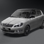 2013 Skoda Fabia Reaction, 2 of 2