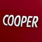 2015 MINI Cooper , 13 of 14