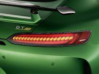 thumbnail #132268 - 2018 Mercedes-AMG GT R