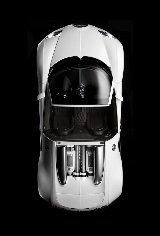 bugatti-veyron-164-grand-sport-20.jpg