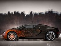 Bugatti Veyron Grand Sport Venet , 5 of 19