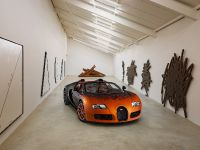 Bugatti Veyron Grand Sport Venet , 6 of 19
