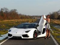 Oakley Design Lamborghini Aventador LP760-4 Dragon Edition, 5 of 31