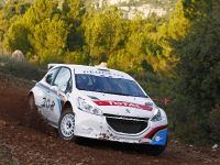 Peugeot 208 Type R5, 2 of 3