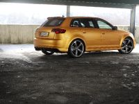 Schwabenfolia Audi RS3 Gold Orange, 5 of 13