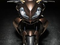 Vilner Aprilia Stingray , 2 of 19