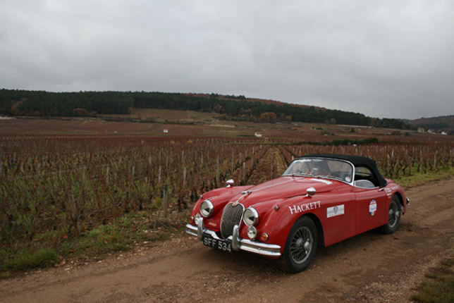Jaguar Hackett Beaujolais Run