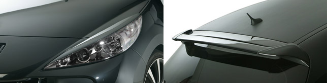 RDX Peugeot 207 details