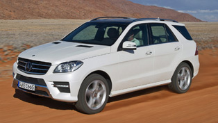 Mercedes S 250 CDI and ML 250 Green Winners for 2011
