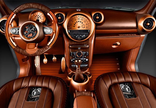 Carlex Design MINI Countryman Interior