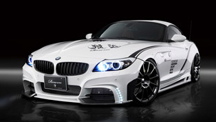 BMW Z4 White Wolf RR by Rowen