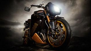 vliner triumph speed tripple bulldog custom bike [video]