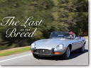 Petrolicious: The Last Of The Breed [VIDEO]