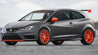 2013 Seat Ibiza SC Trophy - 200HP
