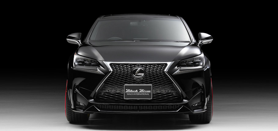 Wald International Lexus NX Front View
