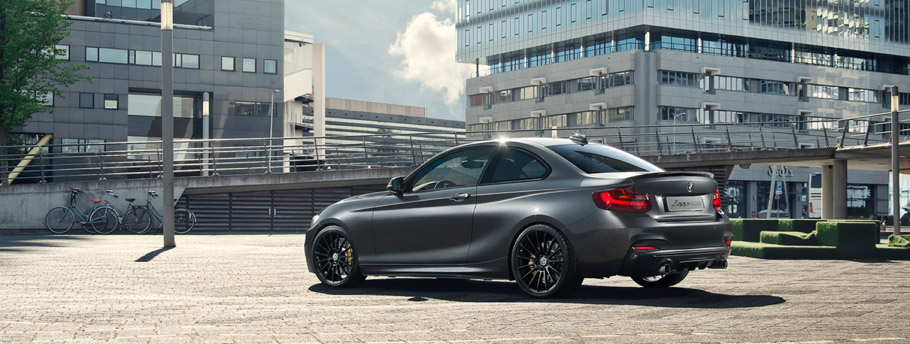 2016 BMW M235i Track Edition Rear and Side View