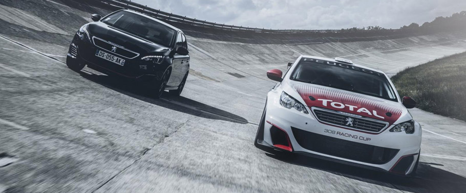 Peugeot 308 Racing Cup and Peugeot 308 GTi