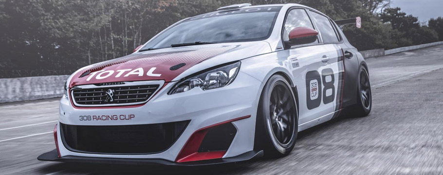 Peugeot 308 Racing Cup Front View