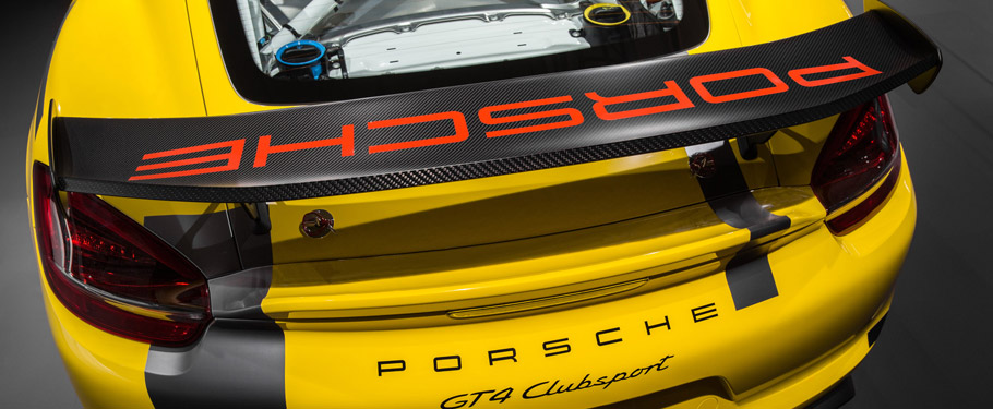 Track-Bred Porsche Cayman GT4 Clubsport  Rear