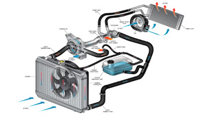About Your Engine's Cooling System