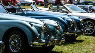 Jaguar enthusiasts gather for a prestigious event