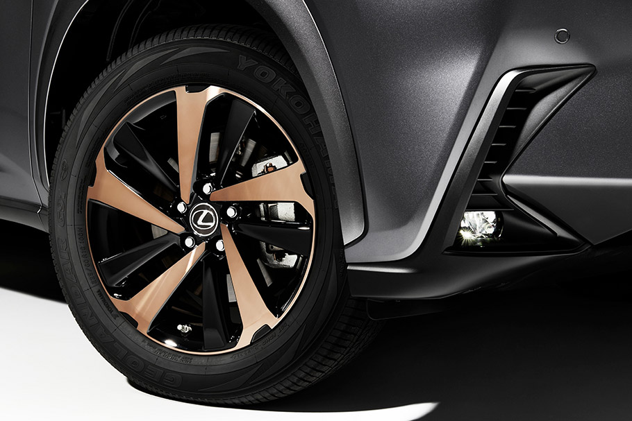 2020 Lexus NX Special Edition
