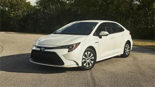 2020 Toyota Corolla Hybrid takes a prestigious award home!